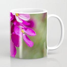 Pink Phlox Flowers Coffee Mug