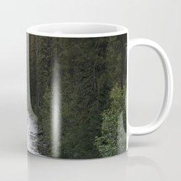 A Forest Path Coffee Mug