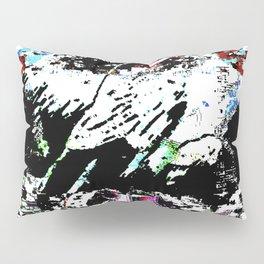 skate0107 Pillow Sham