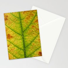autumn leaf macro Stationery Cards