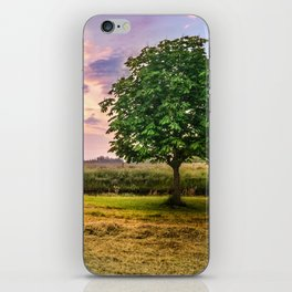 Green Tree and Sunset Sky iPhone Skin