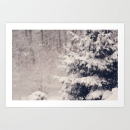 Softly Fallen Snow Art Print