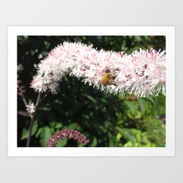 Bright Flower Bright Bee Art Print