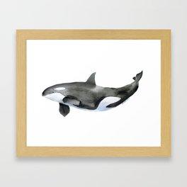 Orca Killer Whale Watercolor Framed Art Print