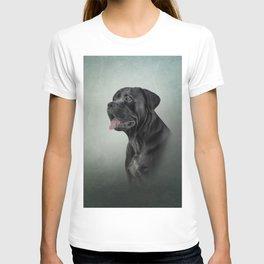 Drawing dog Cane Corso - Italian Mastiff T-shirt