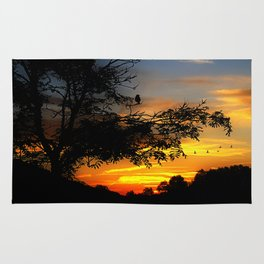 Sunset in the country Rug