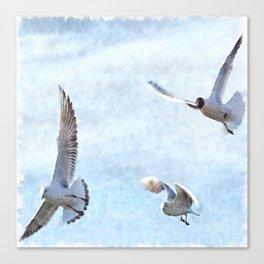 Three Seagulls Watercolor Canvas Print