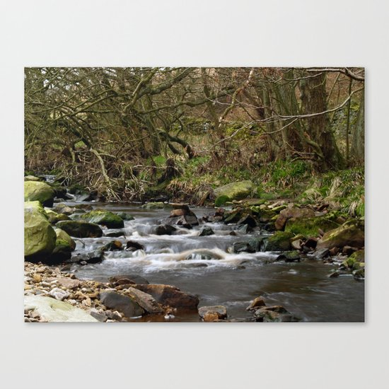 The River Washburn Canvas Print