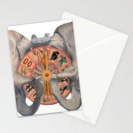 Pelvic Spin Stationery Cards