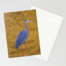Great Blue Heron in the Grass Stationery Cards