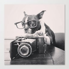 The Photogenic Understudy Canvas Print