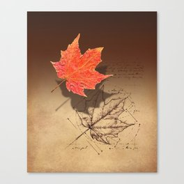 Fall, Maple Leaf, Deconstructed Canvas Print