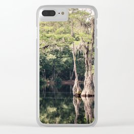 Florida Beauty 9 Clear iPhone Case