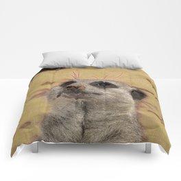 Adorable Meerkat Comforters