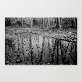Leave Leaf Canvas Print