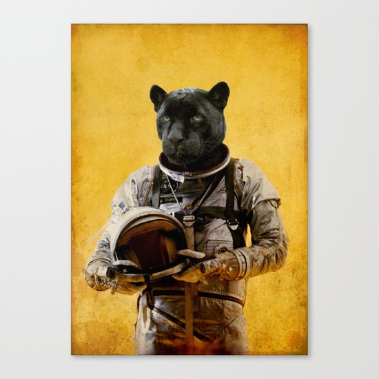 Space Jag Canvas Print