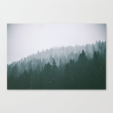 Winter VII Canvas Print