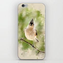 Watercolor Tufted Titmouse Art iPhone Skin