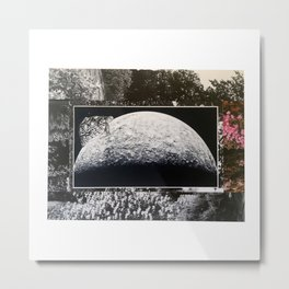 Turtle #4 (Floral Moon) [Cecilia Lee] Metal Print