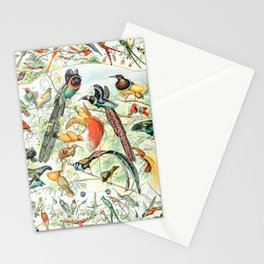 Exotic Birds // Oiseaux IV by Adolphe Millot XL 19th Century Science Textbook Diagram Artwork Stationery Cards