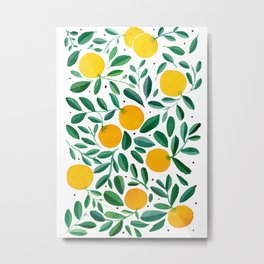 Summer tropical oranges tree branches  Metal Print