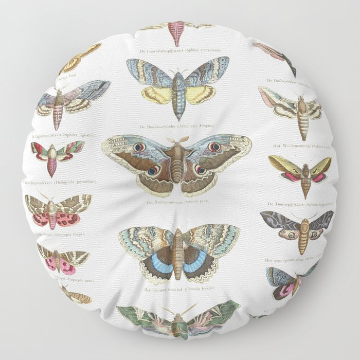 Vintage Moth Chart Floor Pillow