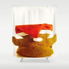 Holiday Bear Shower Curtain