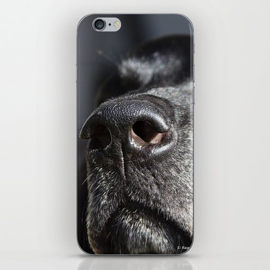 Wake Up and Smell the Coffee iPhone & iPod Skin