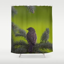 Feathered Friend Shower Curtain