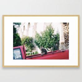 cat on red truck Framed Art Print