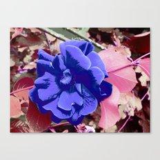 FlowerPower Fantasy 7-B Canvas Print