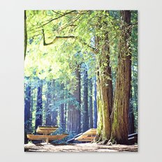 Picnic in the Woods Canvas Print