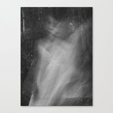 Fading No. 2 Canvas Print