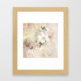 Magnolia Blossoms on a Branch Framed Art Print