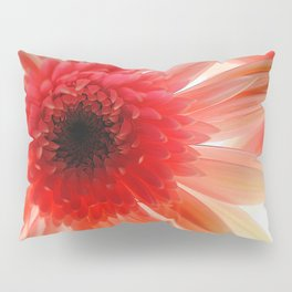 Pink Daisy Pillow Sham