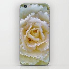 Beige Cabbage from the Garden iPhone Skin