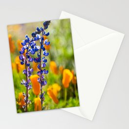 Desert Lupines Stationery Cards