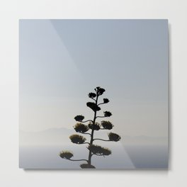 Agave americana, agave flower with mountain silhouette Metal Print