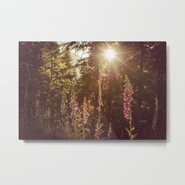 A New Day Wildflowers at Dawn - Nature Photography Metal Print