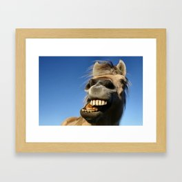 Happy Horse Photography Print Framed Art Print