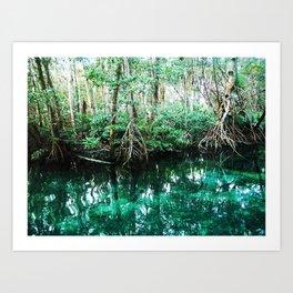 Waters of Avalon Art Print