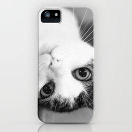 Upside down cat iPhone Case