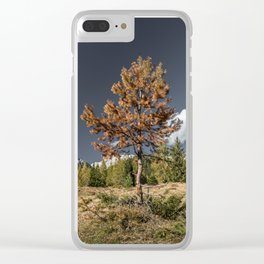 Til' Next Year Clear iPhone Case