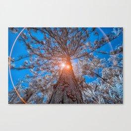 High Tree Canvas Print