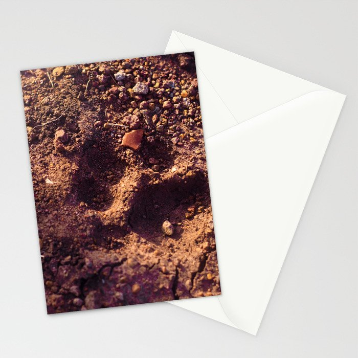 Cheetah Walk Stationery Cards
