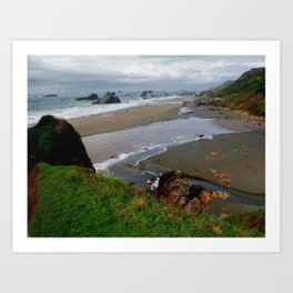 Oregon Coast Art Print