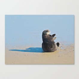 Sea Otter Hey  Canvas Print