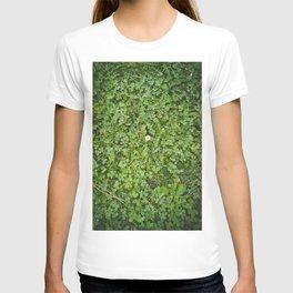 Paseo con la blanca flor T-shirt