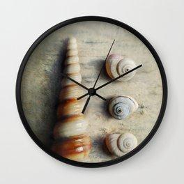 Shells on Beach wood. Wall Clock