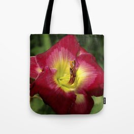 Rich red daylily Joan Derifield Tote Bag